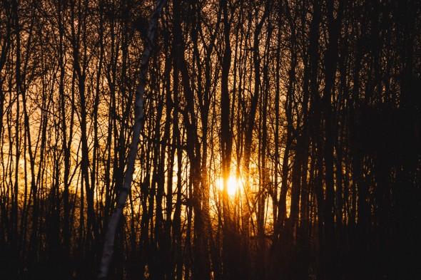 Sonnenaufgang-01-1-200 Sek. bei f - 4,0 ISO 200