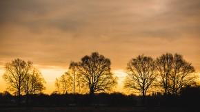 Sonnenaufgang-06-1-400 Sek. bei f - 4,0 ISO 200