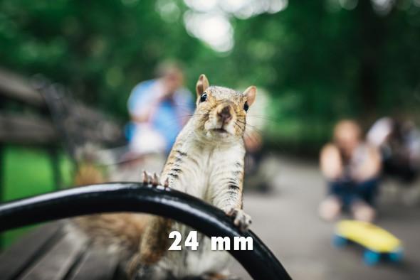24mm_03