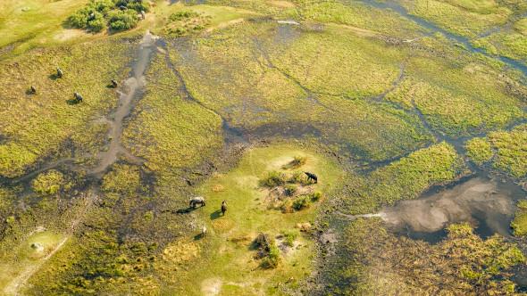Vogelperspektive Okavango Delta Botswana, d610, 70mm, f5.6, 1/320 sek. iso 200