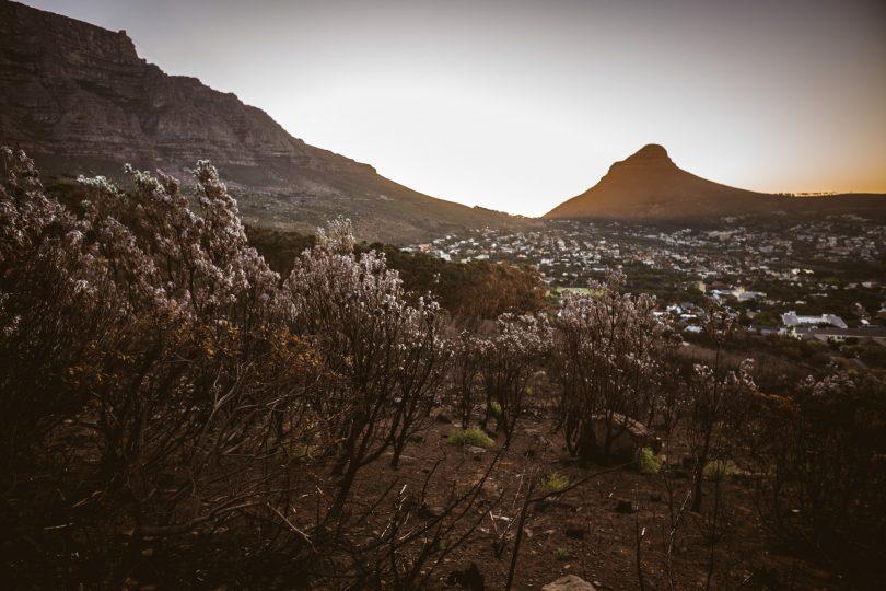 Der Lion's Head am Fuße des Tafelberg