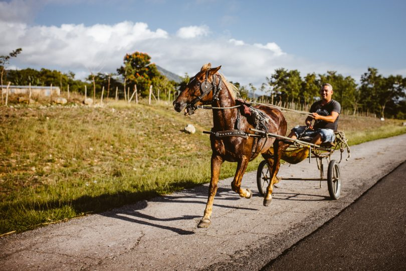 Auf den Straßen sieht man viele Pferdegespanne. Leica M240 + Summilux 35
