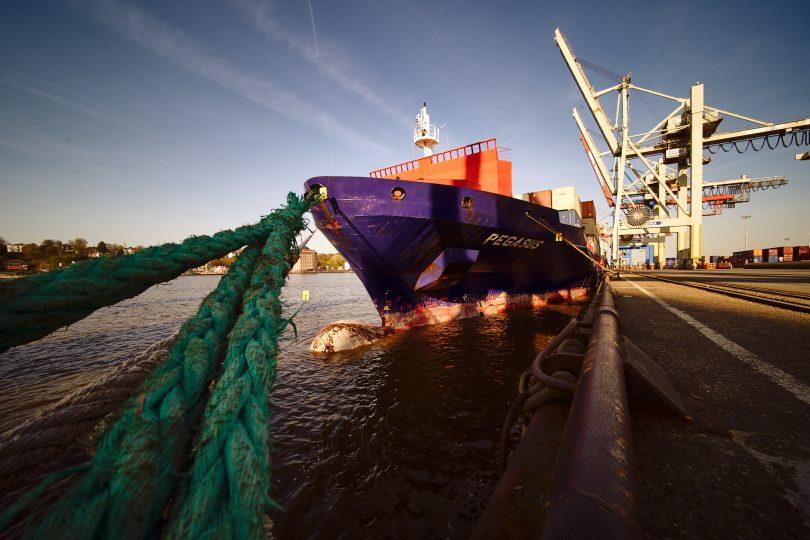 Die Pegasus, ein für heutige Verhältnisse kleines Containerschiff.