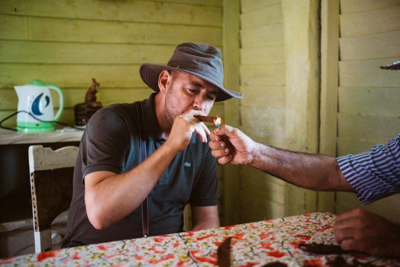 Die selbstgedrehte Zigarre schmeckt besonders leicht, fällt aber auch schnell auseinander.